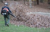 dad-gets-scary-surprise-from-kids-while-blowing-leaves-attachment